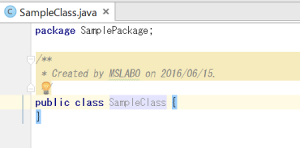 IDEA_SampleClassCode